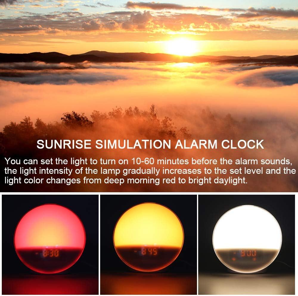 Sonnenaufgang Sonnenuntergang Simulation FM Radio Tageslichtwecker Snooze 2 Alarme 7 Nat/ürlichen 7 Farben 20 Helligkeit Nachtlicht f/ür Erwachsene /& Kinder Wake up Light Lichtwecker Digital