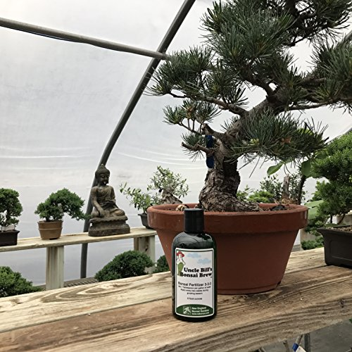 Uncle Bill's Bonsai Brew Exclusively from New England Bonsai Gardens - Premium Bonsai Tree Fertilizer - 8 (Bonsai Food)