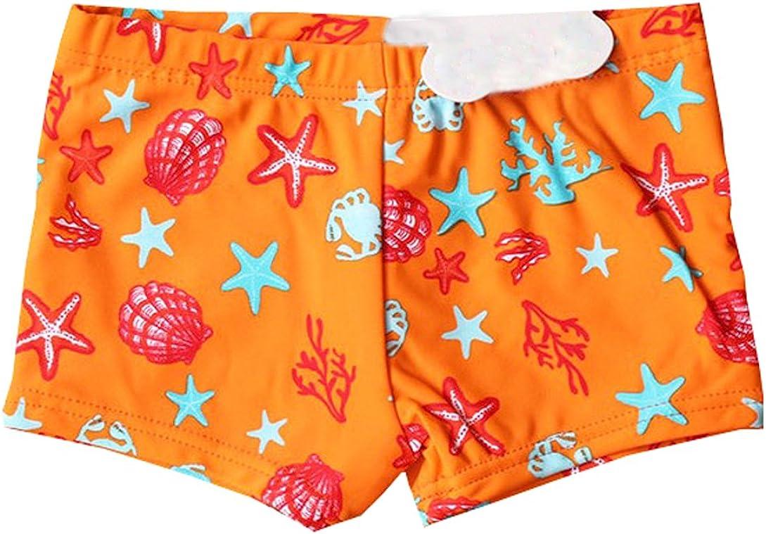 eKooBee Infant Baby Boys Swim Board Shorts Starfish Swim Bottoms