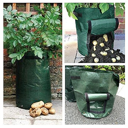 [Potato Sack Hanging Watering , Growing Potatoes in Bags , Grow Bags for Plants , Tomatoes Garden Vegetable , Large Green Farming Container Non Toxic With Handle Foldable & Ebook by Easy2Find] (Tomato Growing Containers)