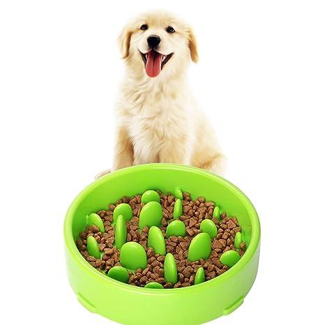 Liboom Comedero para Perro Gato Comedero Lenta Anti-Asfixia Interactivo Comedero Antideslizante Antivoracidad de Perros
