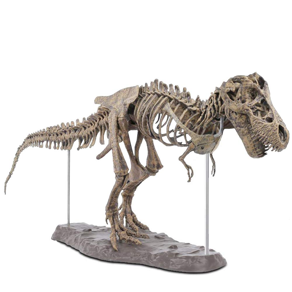 T-Rex Replica Skeleton Puzzles Model, DIY Skeleton Dinosaur Toys PVC Non-Toxic and Eco-Friendly, Dino Bones Puzzle 3D Puzzles Dinosaur Simulation Edu-Toys for Kids Ages 6 and Up by Lucky Star