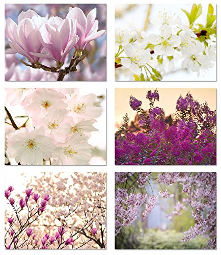 Spring Blossoms Blank Note Cards - Flower Greeting Cards with Envelopes - 6 Unique Designs - 5.5