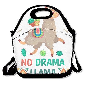 e07178062b03 Amazon.com: LKJHGF Personalized Lunch Boxes No Drama Llama Lunch ...