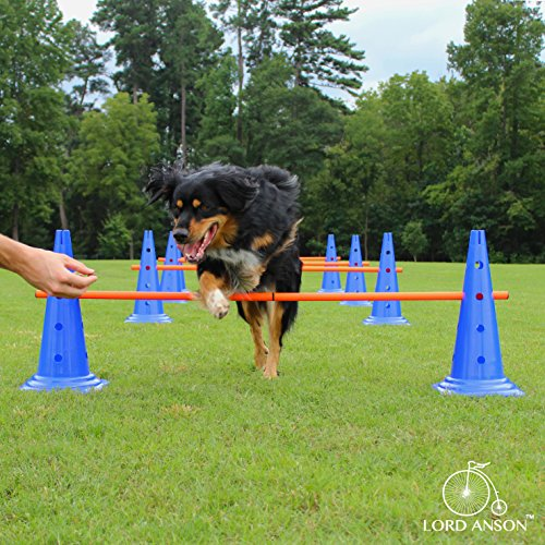 Lord AnsonTM Dog Agility Hurdle Cone Set - Canine Agility Training Set - Obedience, Agility, and Rehabilitation - 8 Agility Cones and 4 Agility Rods