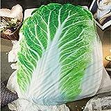 Getime 3D Fruit Vegetables Funny Blanket Bedding
