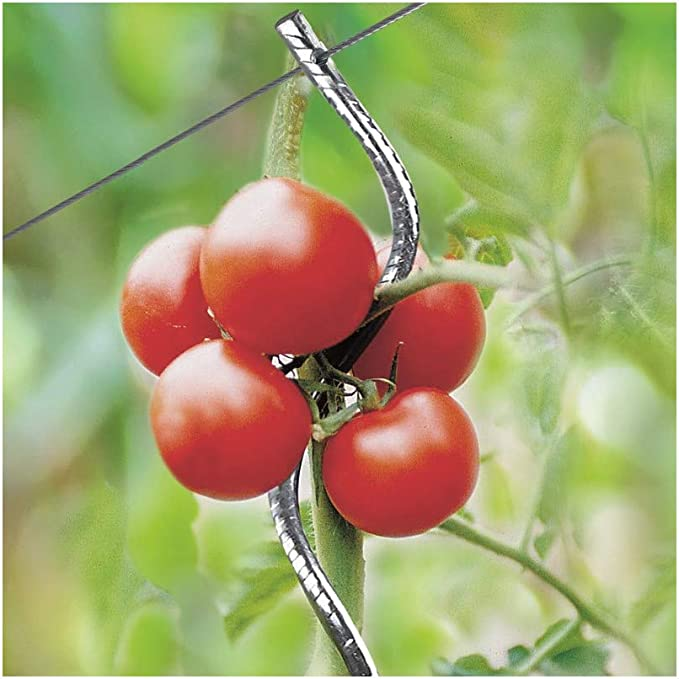 Générique Tutor de Tomate con Gancho, Lote de 15 Unidades, Color ...