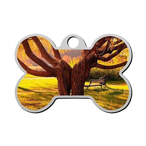 Sunset Tree - Etiquetas para identificación de Perros, Gato ...
