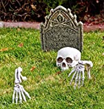 Scary Skull and Hands Skeleton, Realistic Bones for Halloween Decorations, Garden Halloween Decor, Skeleton Decorations, Yard Decorations For Sale