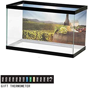 wwwhsl Aquarium Background,Static Cling,White Wine with Barrel on Famous Vineyard in Chianti Tuscany Agriculture Underwater Poster Fish Tank Wall Decorations Sticker
