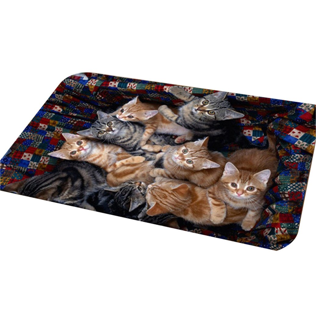 Shuohu Lovely Cat Kitty Door Mat, Bathroom Indoor/Outdoor Non Slip Washable Kitchen Area Rug