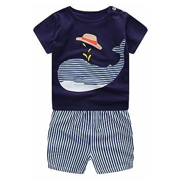 Covermason Niños Ropa Venta de liquidación Bebé Recién Nacido Bebés Niños Trajes Cartoon Whale Camiseta + Shorts 2 UNIDS Conjunto(18M, Azul): Amazon.es: ...