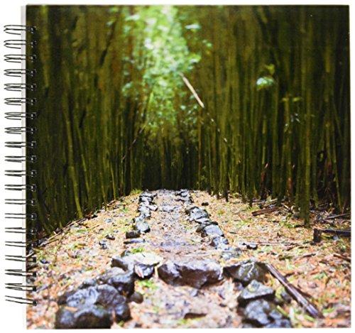 3dRose db_89188_2 Flora, Bamboo Forest, Pipiwai Trail, Haleakala Maui - US10 JGS0019 - Jim Goldstein - Memory Book, 12 by 12-Inch (Pipiwai Trail)