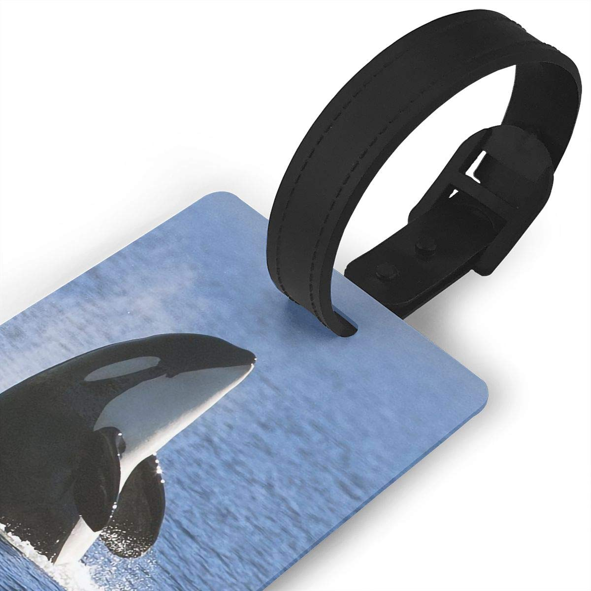 2 Pack Luggage Tags Whales Travel Tags For Travel Tags Accessories
