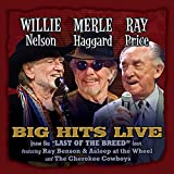 Willie Merle & Ray: Big Hits Live From The Last Of The Breed Tour