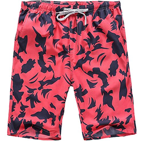 Men's Quick Dry Printing Boardshorts Bathing Swimming Trunks Beach Shorts 09 - Shorts Mens 09