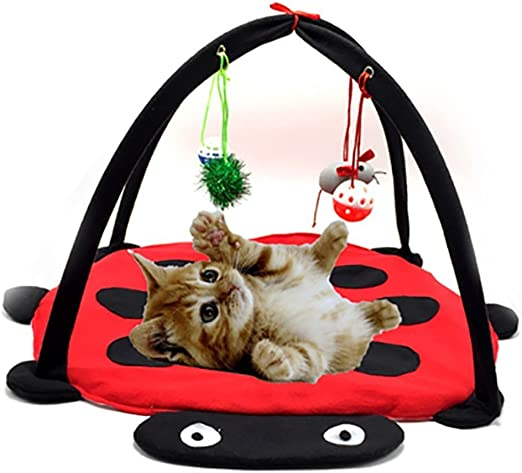 Freeas Cat Interactive Bed Gato Perro Interactivo Estera Mascota Almohadilla Cama con Colgando Juguetes Bolas y Ratones, Gato Juguete Estupendo Regalo, (1): Amazon.es: Productos para mascotas
