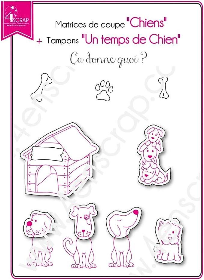 HEALLILY Tampons transparents pour chats Tampons en silicone Tampons animaux d/écoratifs pour la fabrication de cartes DIY Scrapbooking Album Photo D/écoration Journal