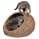 D+GARDEN Wicker Cat Bed Dome for Medium Indoor Cats - a Covered Cat Hideaway Hut of Rattan Houses Pets in Dome Basket - Washable