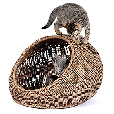 Cat Basket D+GARDEN Wicker Cat Bed for Indoor Cats – a Covered... [tag]