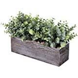 Faux Eucalyptus Plants in Rustic Rectangular Wood Planter Box Artificial Eucalyptus Greenery Arrangement Potted Plant in Dust