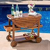 outdoor bar cart Tiller Outdoor Dark Acacia Wood Bar Cart with Shiny Powder Coated Aluminum Accents