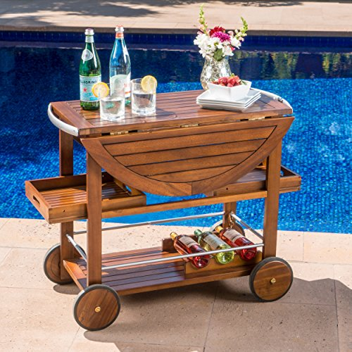Christopher Knight Home Tiller Outdoor Dark Acacia Wood Bar Cart with Shiny Powder Coated Aluminum Accents, Oak