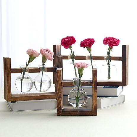 Amazon Ivolador Desktop Glass Planter Bulb Vase With Retro
