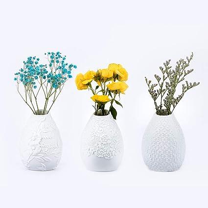 Antiss Ceramic Embossed Flower Arrangement Vase Single Bud Vase Decorative Modern Floral Vase for Home Decor  sc 1 st  Amazon.com & Amazon.com: Antiss Ceramic Embossed Flower Arrangement Vase Single ...