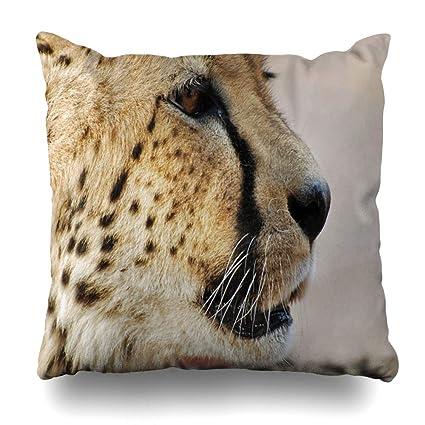 Astonishing Amazon Com Pakaku Decorative Pillows Case Throw Pillows Onthecornerstone Fun Painted Chair Ideas Images Onthecornerstoneorg