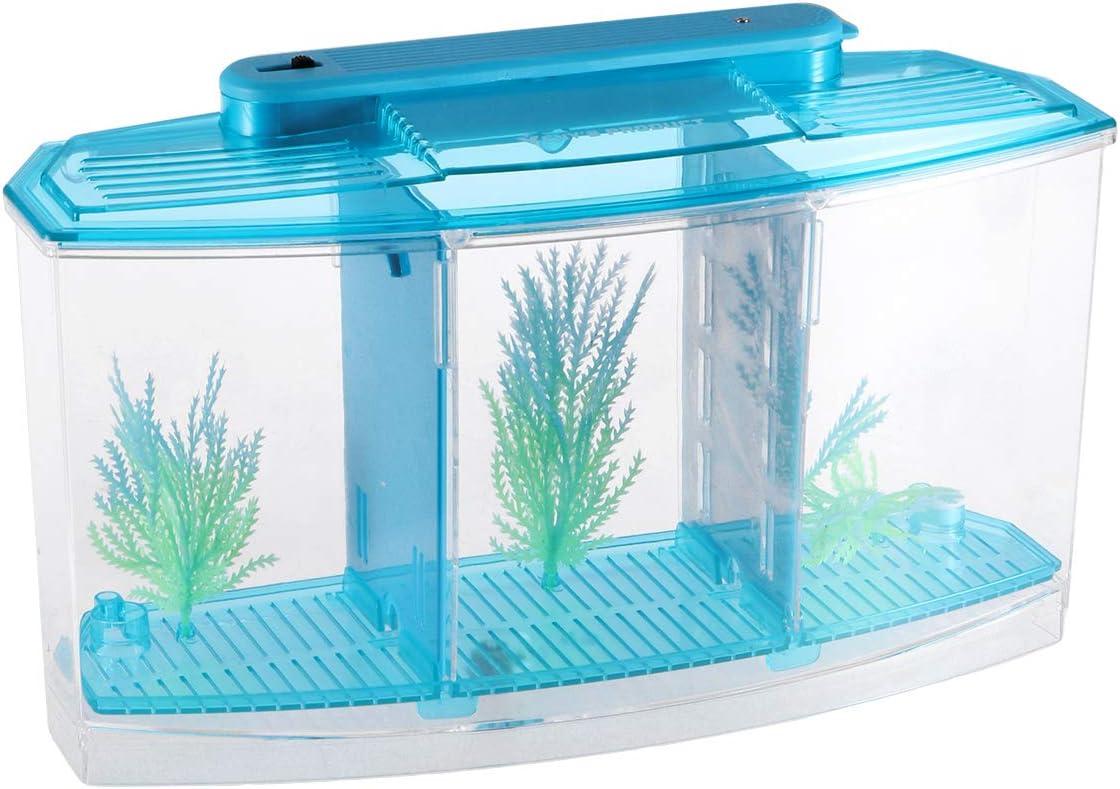 Amazon Com Popetpop Aquarium Fish Breeder Box Fish Breeding Isolation Box Rectangle Hatching Seedlings Aquariums For Home Shop Blue Pet Supplies