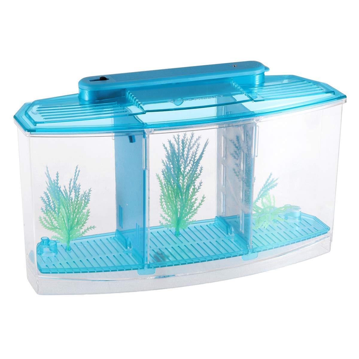 POPETPOP Mini Desktop Aquariums Fish Tank Ecological Goldfish Tank Hatchery Breeder Box for Living Office and Home dÃcor(Blue) by POPETPOP (Image #1)