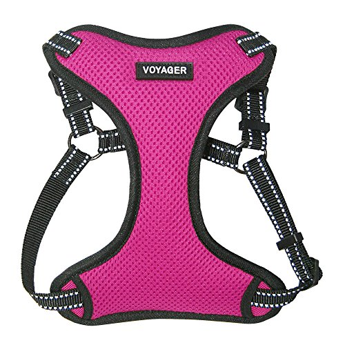 Best Pet Supplies Voyager - Fully Adjustable Step-in Mesh Harness with Reflective 3M Piping (Fuchsia, Medium)