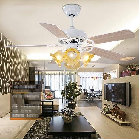 Amazon.com: DEE Lights - Lámpara de techo para salón ...
