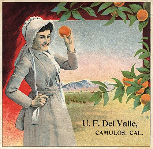 U.F. Del Valle Brand - Camulos, California - Citrus Crate La
