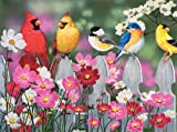 Songbirds and Cosmos 500 pc Jigsaw Puzzle - Best Reviews Guide