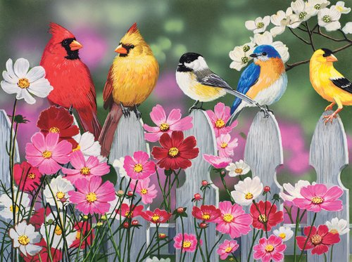 Songbirds and Cosmos 500 pc Jigsaw Puzzle (500 Piece Puzzles Birds)
