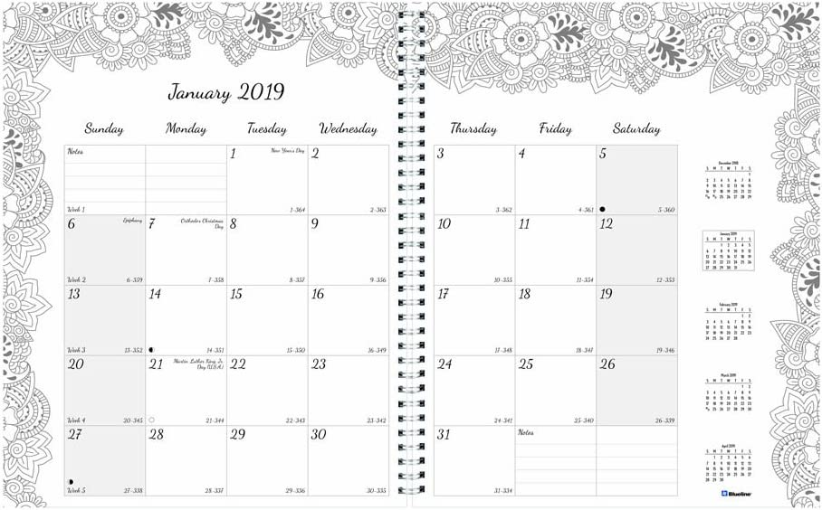 Blueline 2019 DoodlePlan Coloring Monthly Planner, 18-month Jul 2018 - Dec 2019, Botanica Designs, 11 x 8.5 inches (C2921.01-19)
