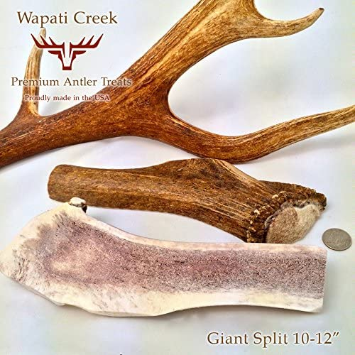 XX-Large Split Elk Antler Dog Chew 10-12 12-14 Ounces Massive X-Large Chew Bone for Large Dogs Aggressive Chewers, Grade-A USA Fresh 100 Organic Healthy Treats from Wapait Creek Premium