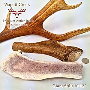 "free shipping X-LARGE SPLIT Elk Antler Dog Chew 10-12"" and up to 1- Pound each!"