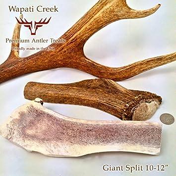 XX-Large Split Elk Antler Dog Chew 10-12 12-14 Ounces Massive X-Large Chew Bone for Large Dogs Aggressive Chewers, Grade-A USA Fresh 100 Organic Healthy Treats from Wapait Creek Premium