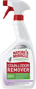Nature's Miracle P-96965 Stain and Odor Remover Dog, Odor Control Formula, Lavender Scent,32 oz