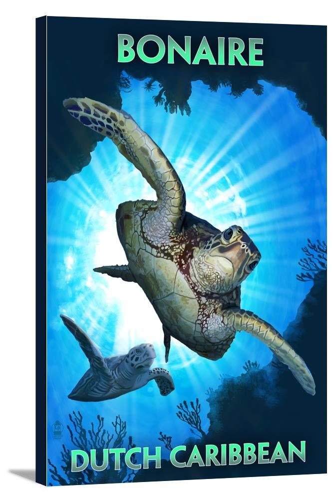 ボネール島、オランダCaribbean – Sea Turtle Diving 12 x 18 Gallery Canvas LANT-3P-SC-50713-12x18 B018P4HU9G  12 x 18 Gallery Canvas