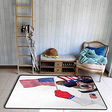 Amazon.com: Girl Bedroom Rug 4th of July Patriotic American ...