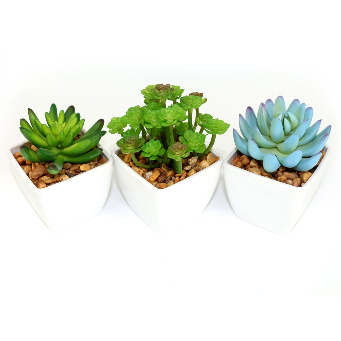 Myartte Home Decor-Set of 3 Different Artificial Succulent Plants in 3 Inch Cube Shape Plastic Basin for Home/Office decoration