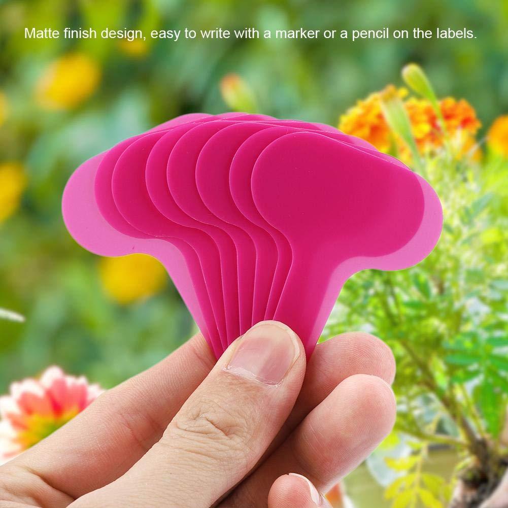 7cm Plante Imperm/éable En Plastique Tags100Pcs T-type P/épini/ère Jardin Pot Marqueurs Arbre Piquet Etiquettes Kit De Jardinage Outil 5 rose