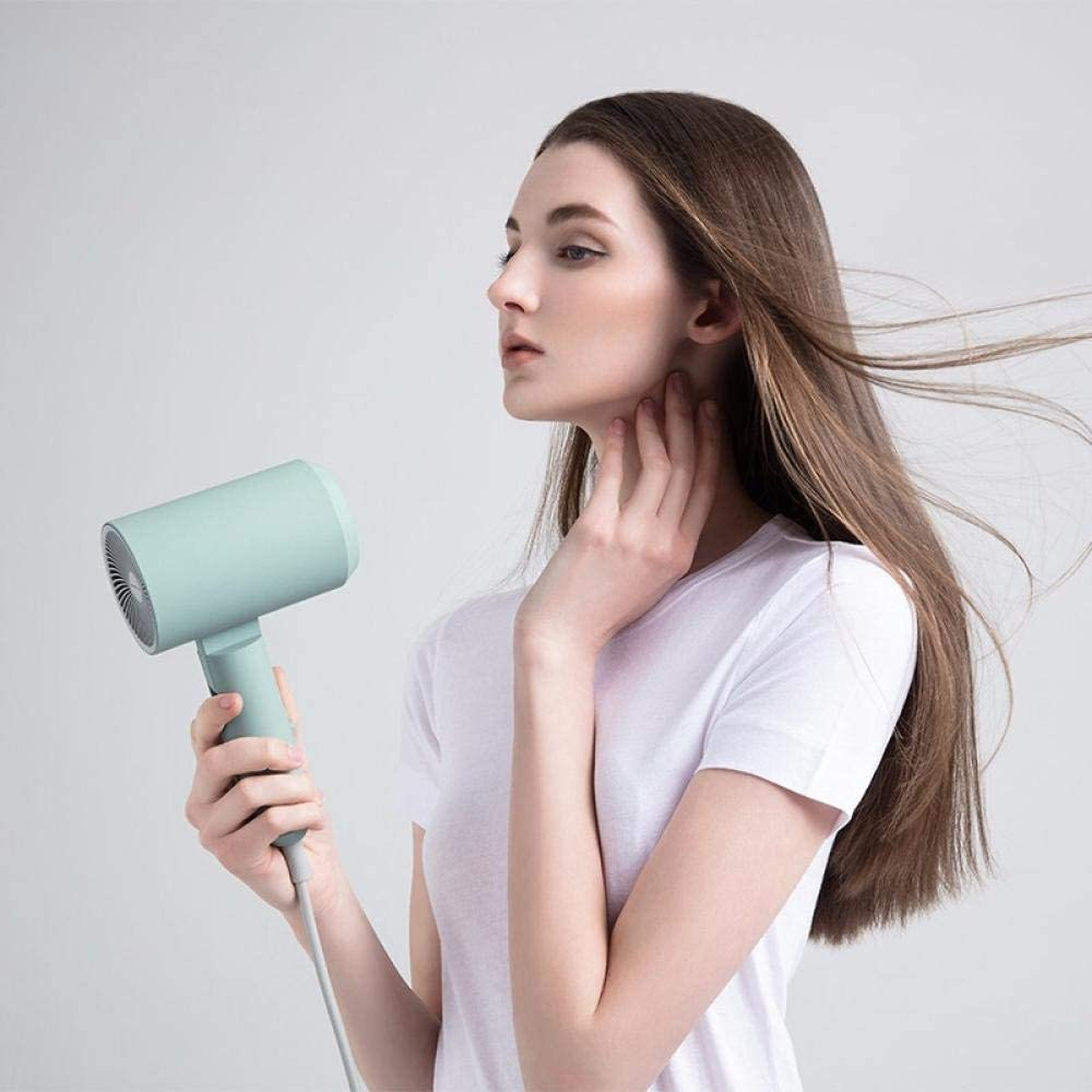 Powerful and lightweight professional hair dryer, powerful and durable motor, compact design, suitable for salon, family and travel, with concentrator, foldable Green sGVer