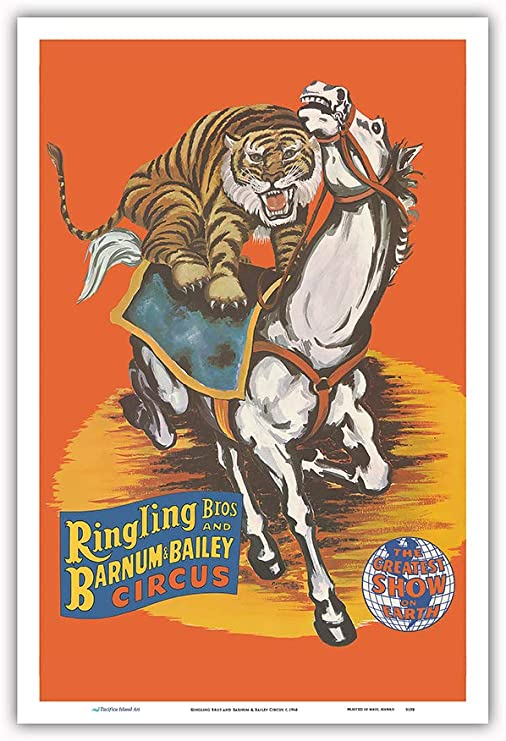 Stunning Wildlife White Tiger Art Silk Poster 12x18 24x36