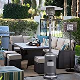 Garden Outdoor Patio Heater Propane Standing LP Gas Steel w/accessories New (Silver Gray)