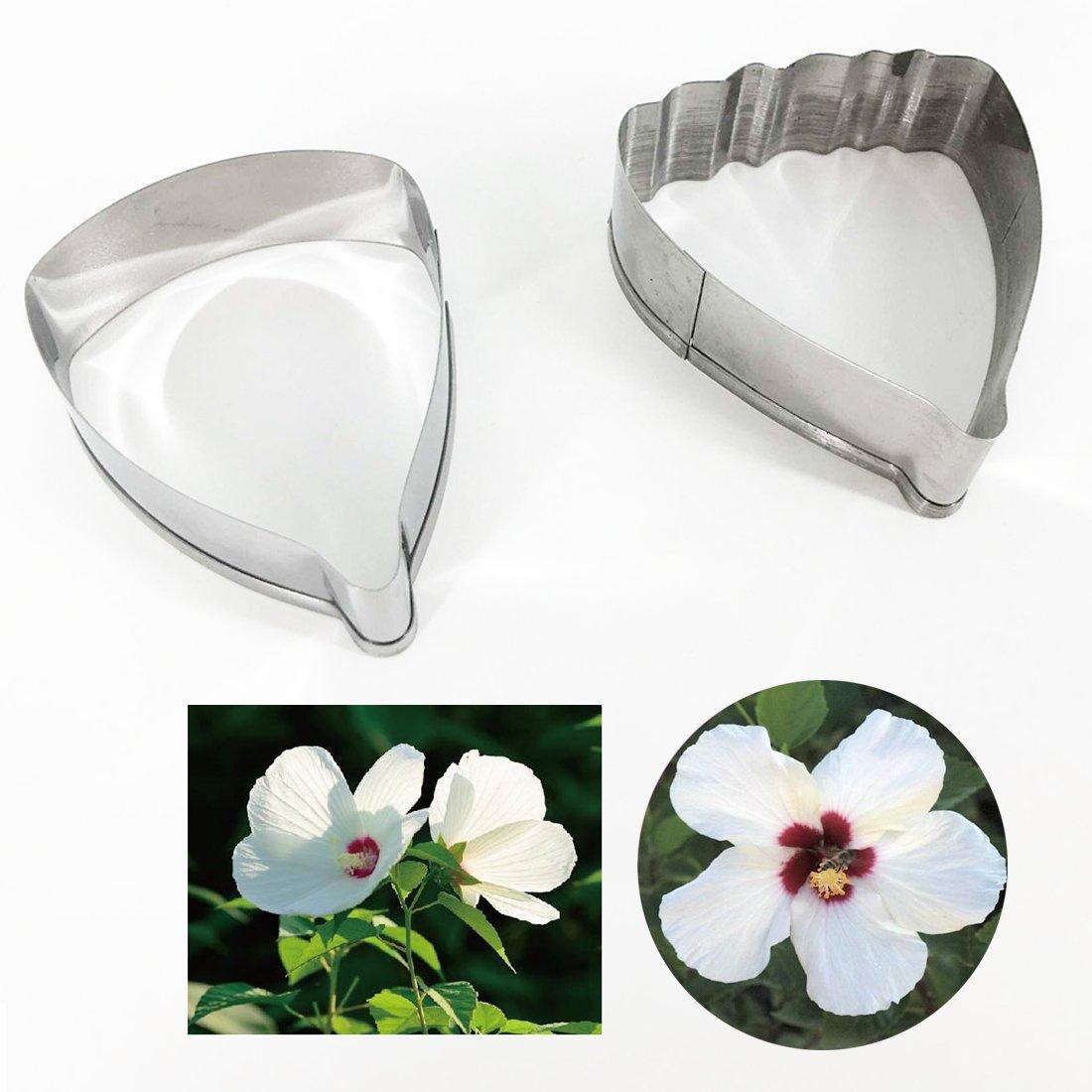Amazon Garwarm 2 Pcs Hibiscus Flower Cutter Set Fondant Cake